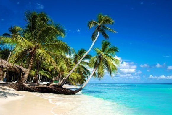 Tropical beach in caribbean sea