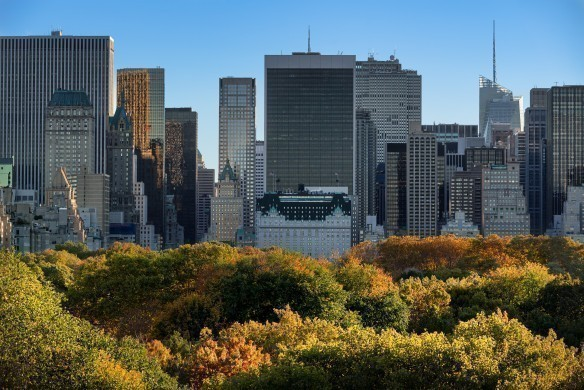 Central Park and Manhattan skyscrapers