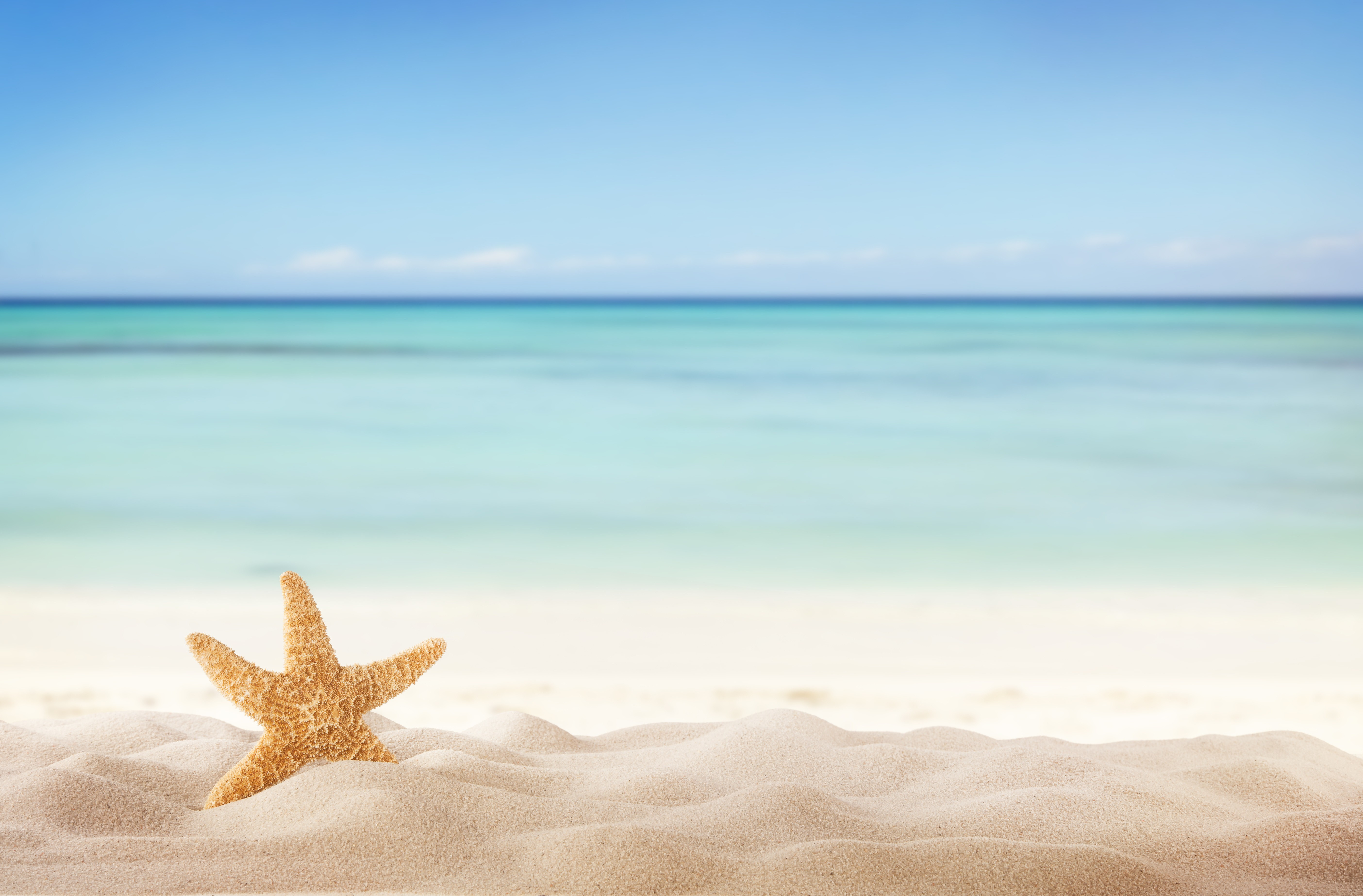 Create Your Own Room Summer Beach With Starfish Yellow Colours Canvas