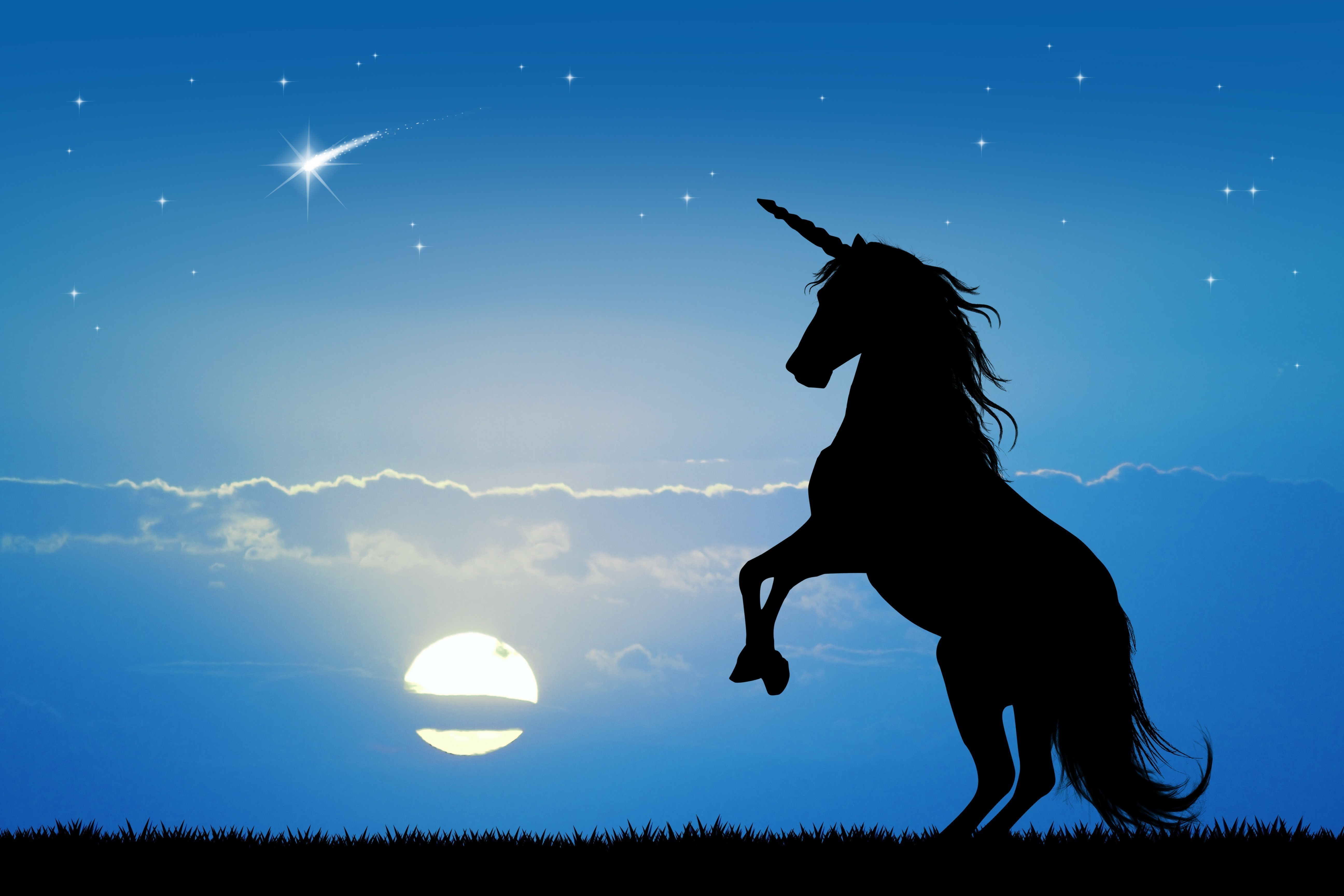 Simple Blue Prints >> Unicorn at sunset - Fantasy - Categories - Canvas Prints | Wonder Wall