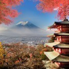 Mt. Fuji with fall colours