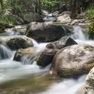 Springtime Rapids