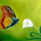 Flying butterfly on green background