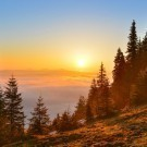 Sunrise forest in spring mountains