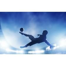 Football, soccer match