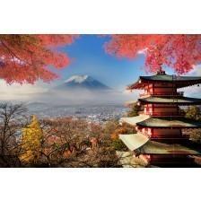 Mt. Fuji with fall colours