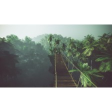 Rope bridge in misty jungle with palms