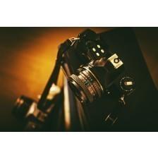 Aged Analog Film Cameras