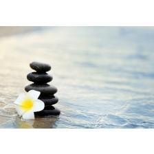Pebbles and fragipani flower