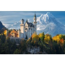 Famous Neuschwanstein Castle in Germany