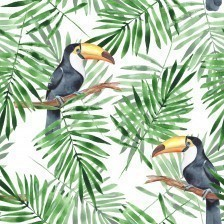 Palm leaves and Toucan