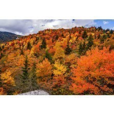 Fall off The Blue Ridge Parkway